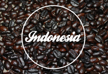 Robusta Indonesia